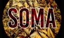 soma head image