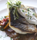 Made in Camden - Grey Mullet