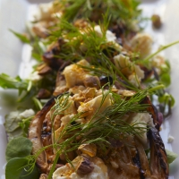 Made in Camden - Fennel Salad