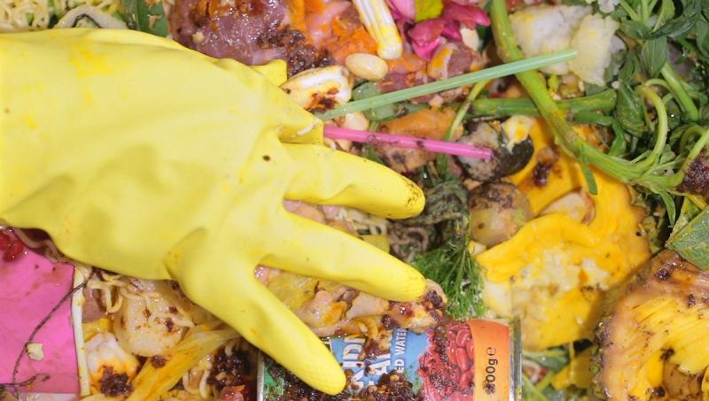 waste blog 3